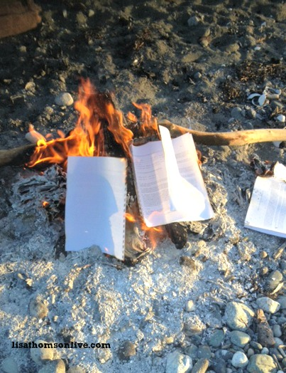 Let it burn book move on by vivki